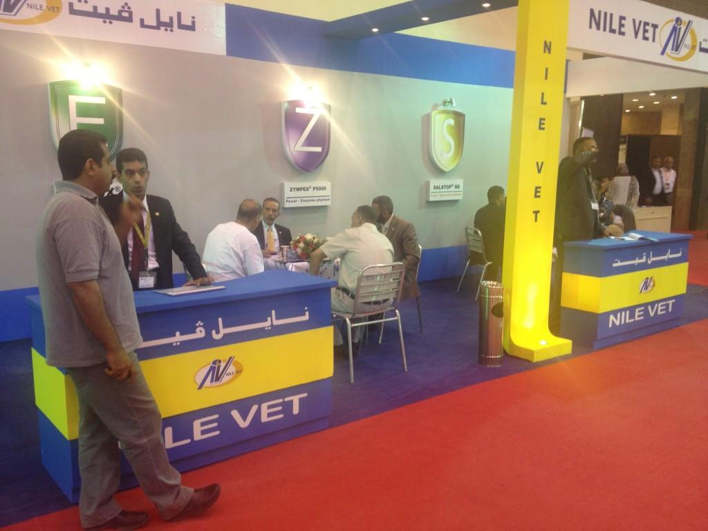 Exhibition in Cairo