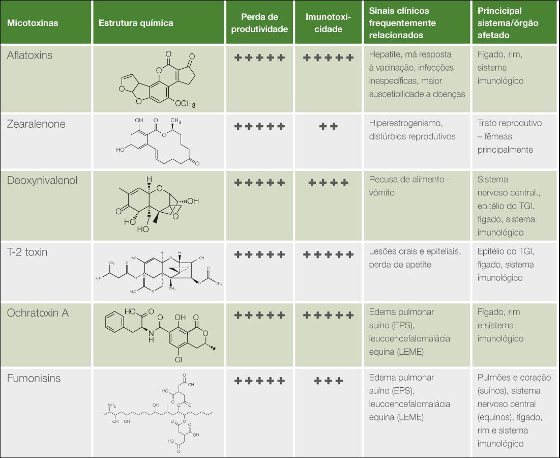 Micotoxinas específicas