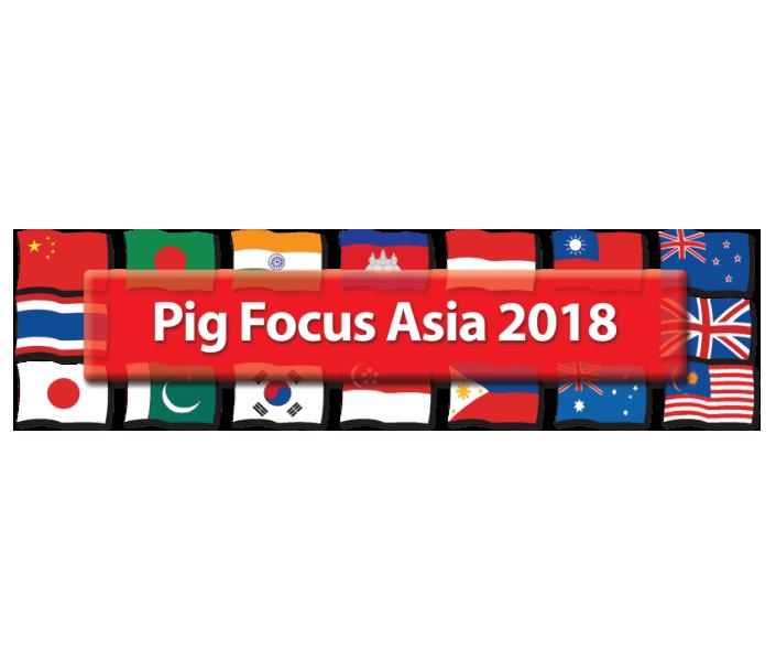 Pig_Focus_Asia
