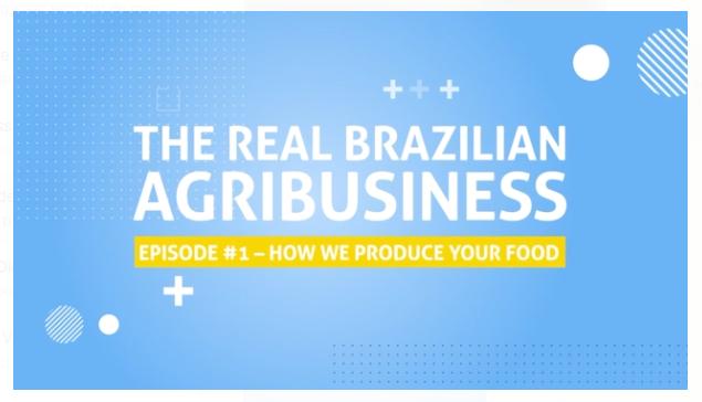 Video Brazil